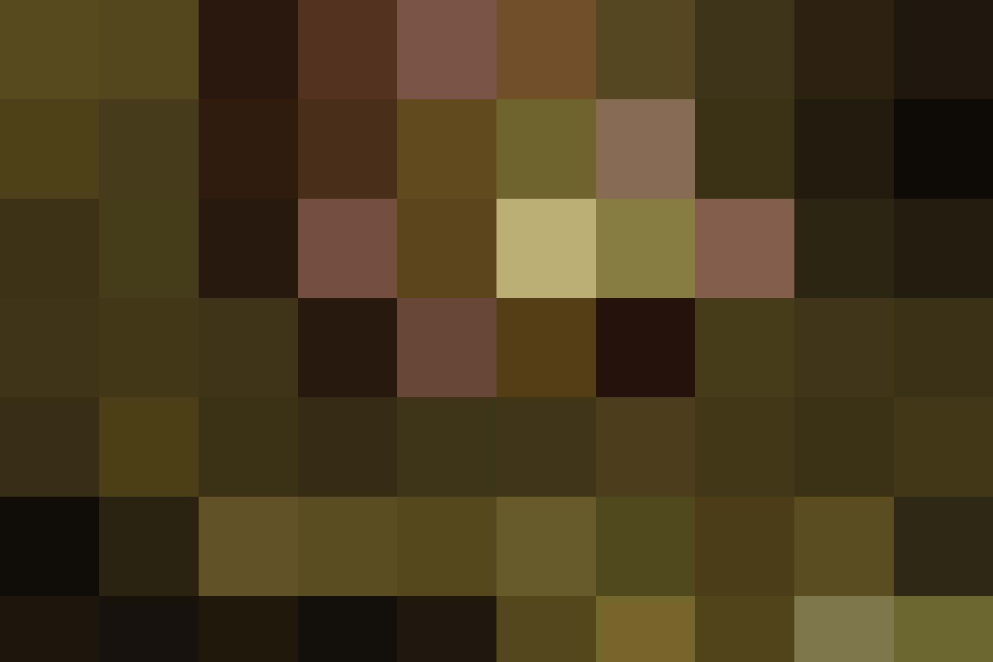 HAL BREW Landscape 2500x1666 1