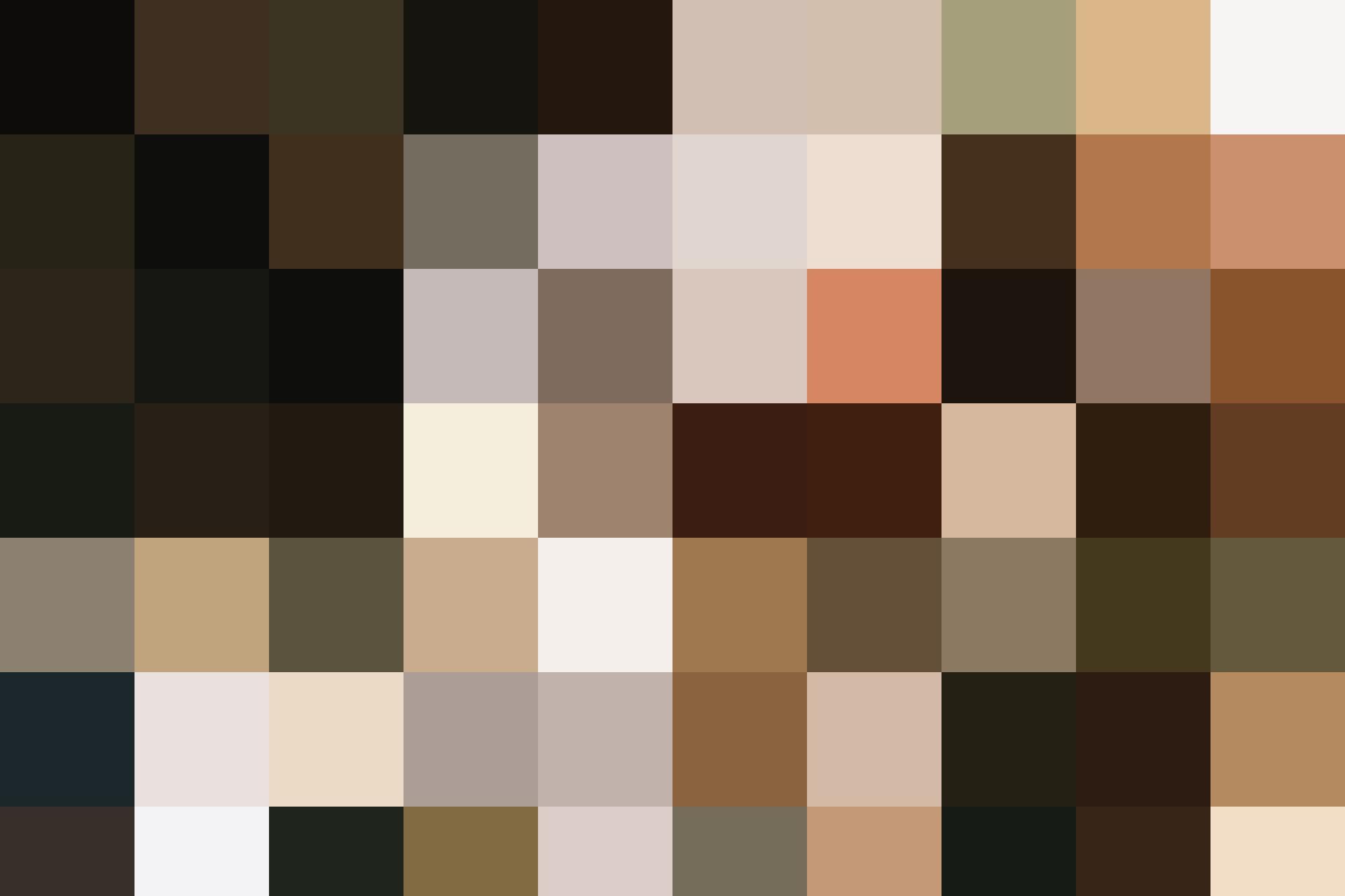 HAL BREW Landscape 2500x1666 2
