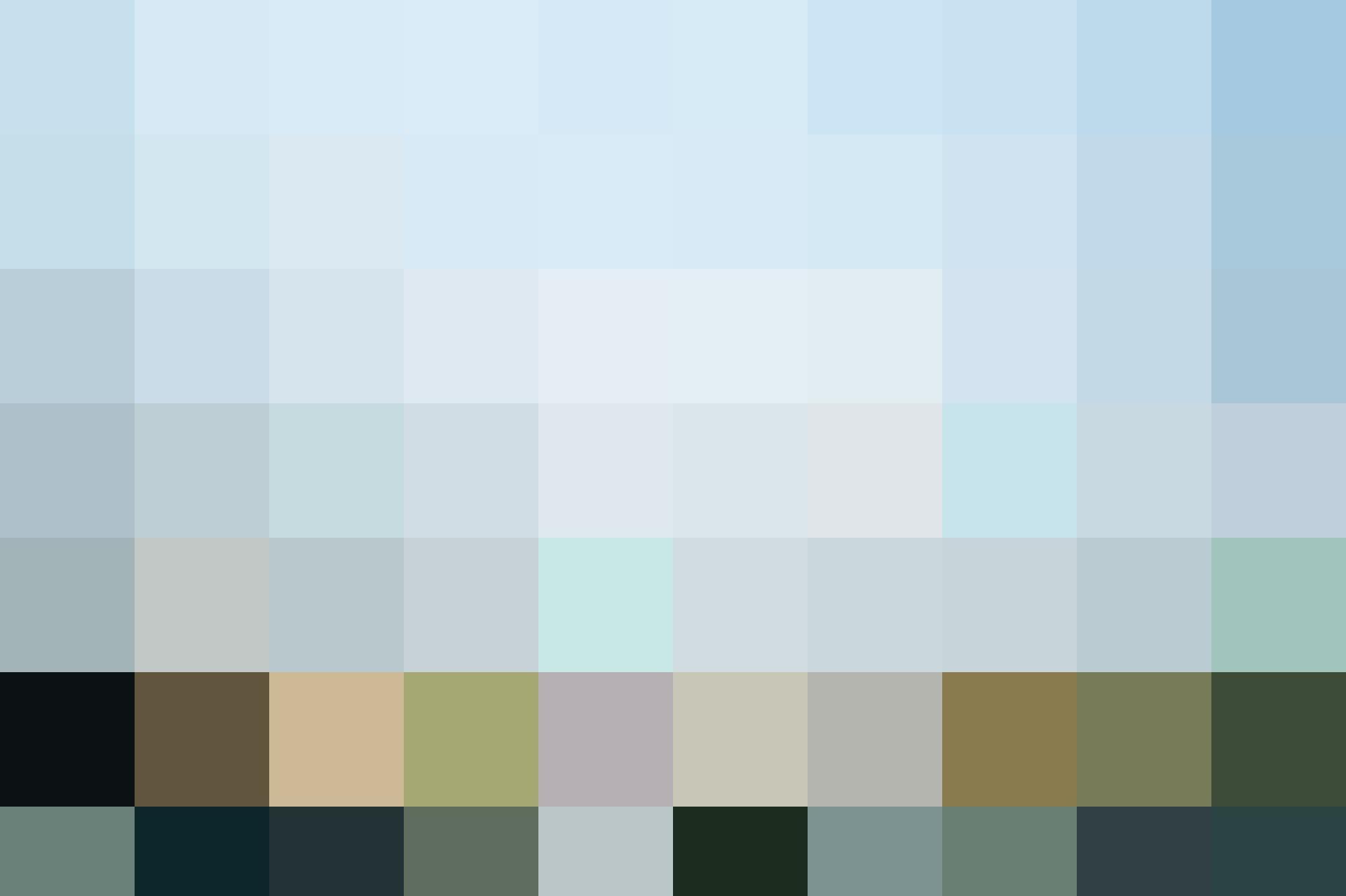 HAL CLD Landscape 2500x1666 10
