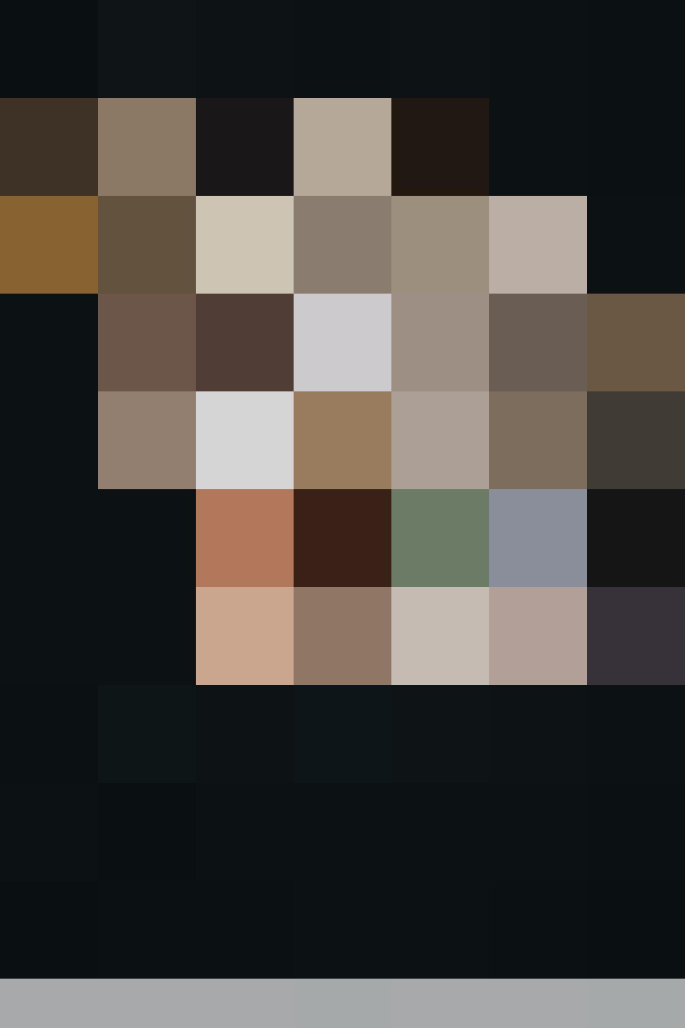 HAL FL CLD Portrait 1666x2500 4