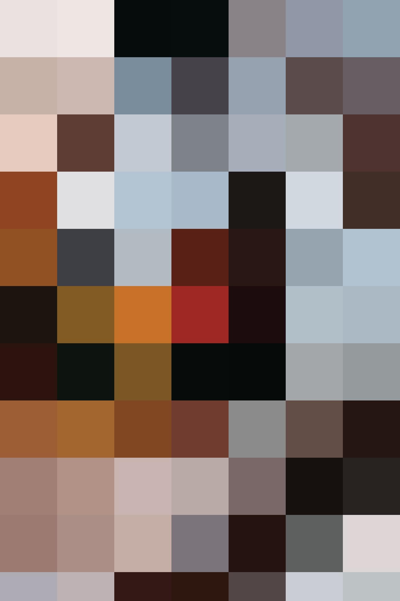 HAL Portrait 1666x2500 2