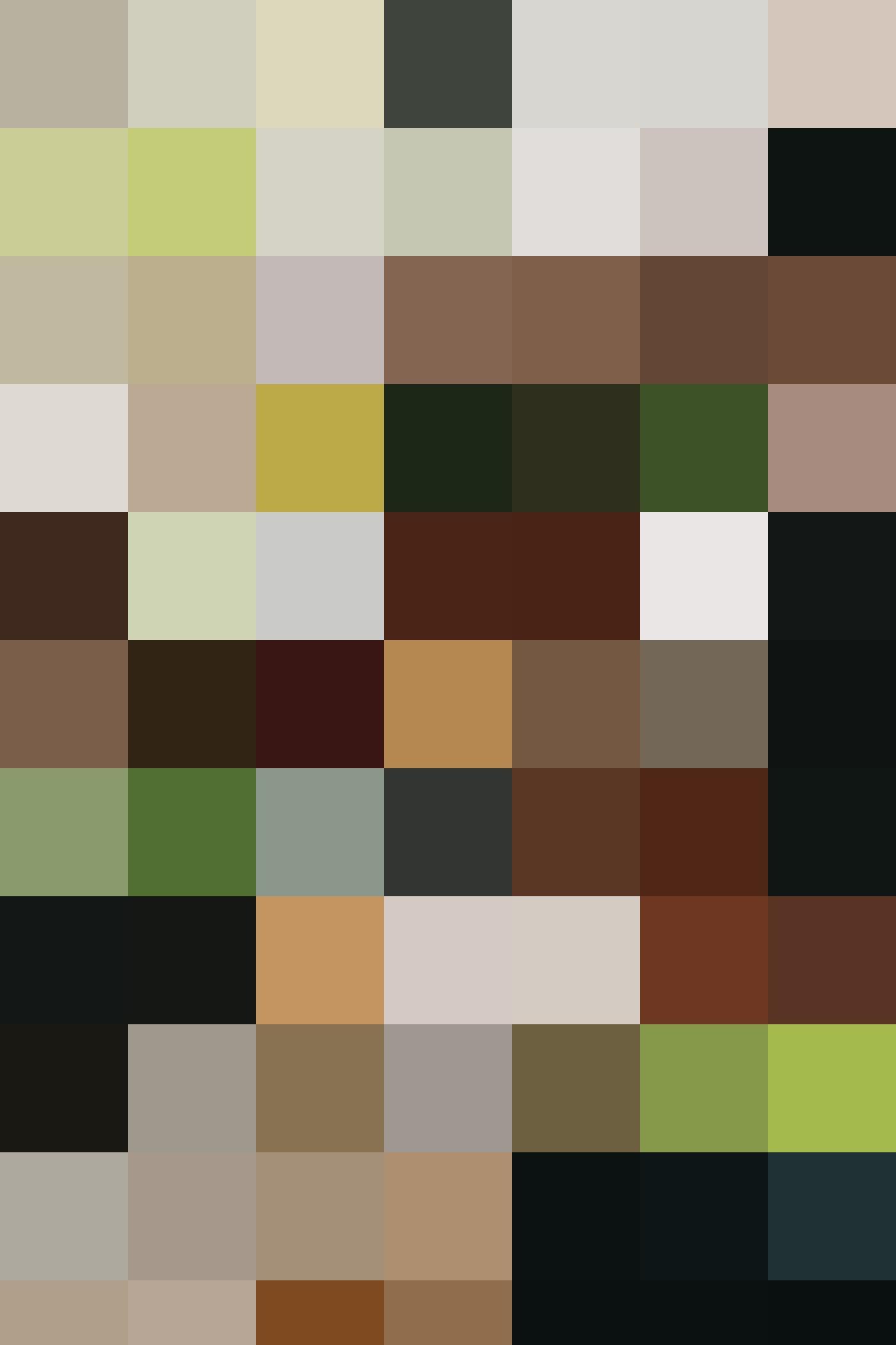 HAL Portrait 1666x2500 4