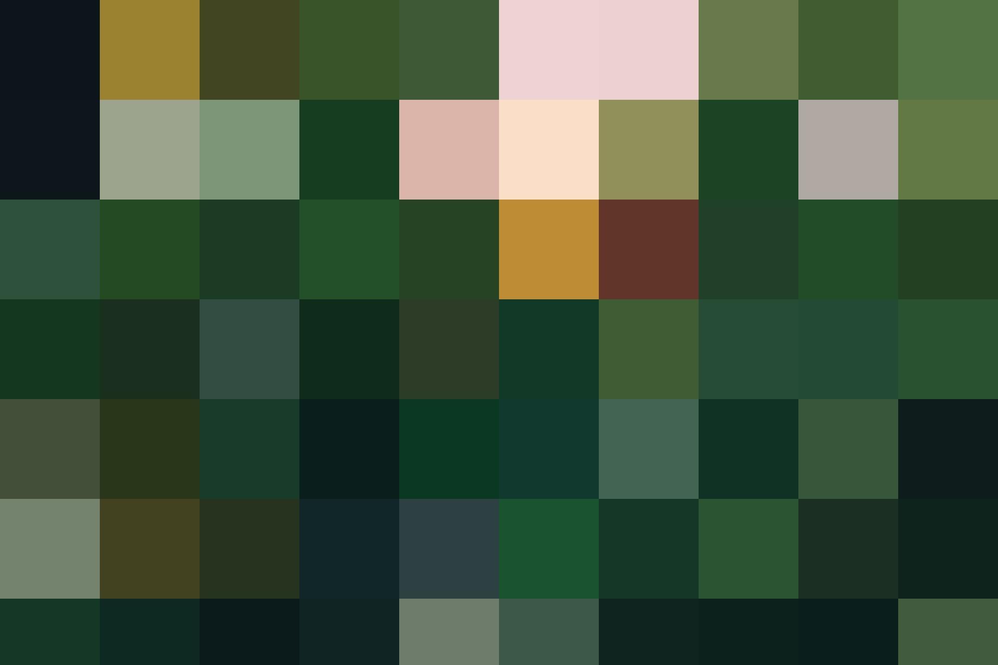 HAL FL Landscape 2500x1666 1